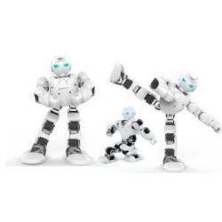 Robot Humanoïde Alpha 1S